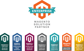 Custom Magento E-Commerce Website 